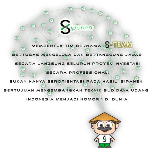sipanen network with word